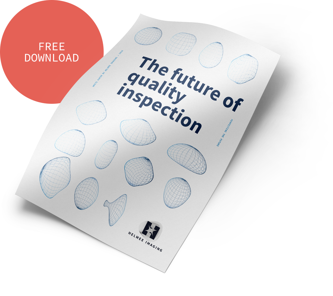 Download white paper: The Future of Quality Inspection